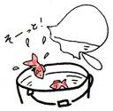 バケツの水に金魚をうつす